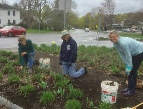 May 2017 Day of Service