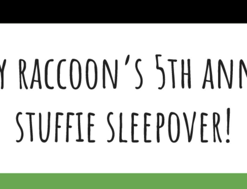 Stuffy Sleepover!