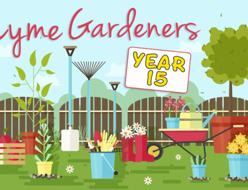 Lyme Gardener's 15th Year!