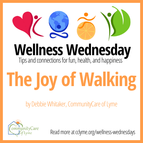 Joy of Walking