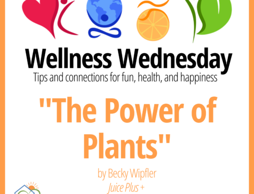 The Power of Plants – Wellness Wednesday